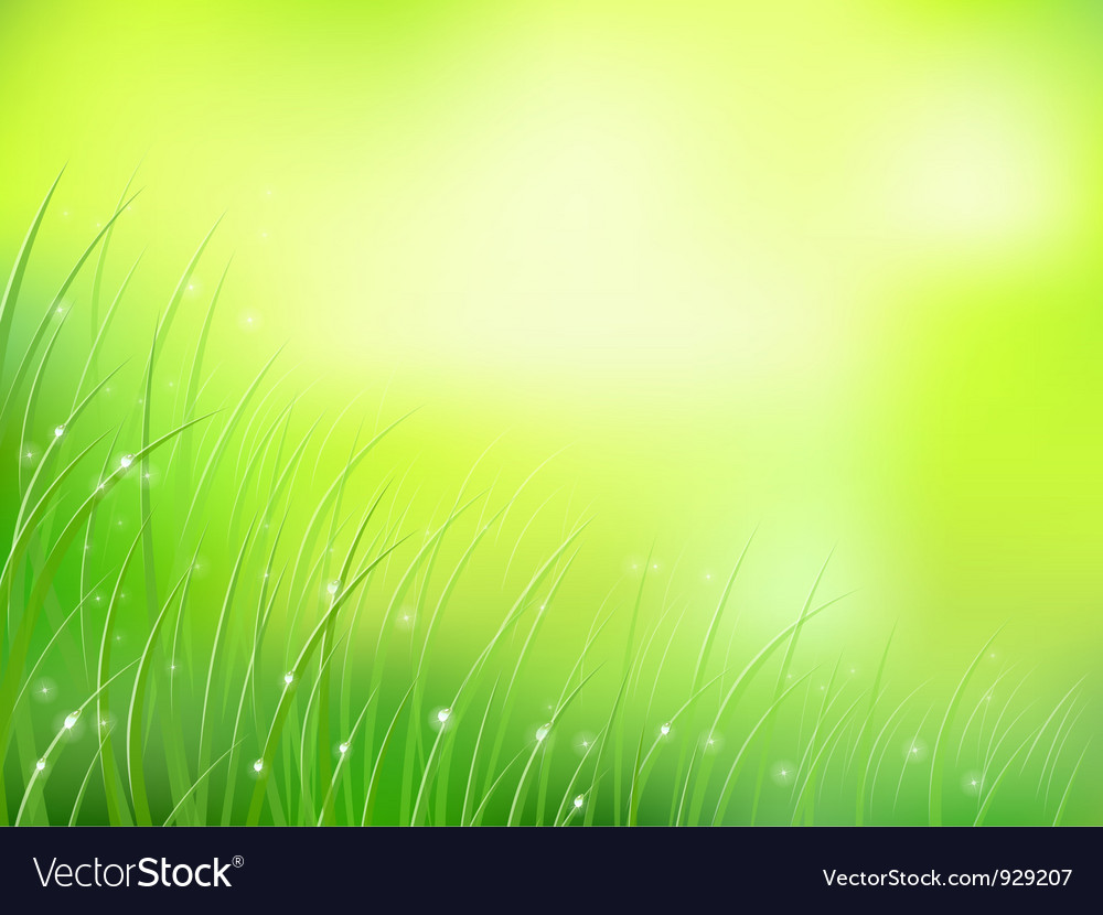 Morning sunlight grass vector | Price: 1 Credit (USD $1)