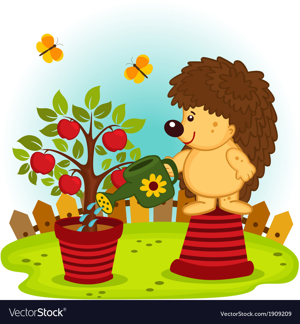 Hedgehog watering a tree with apples vector | Price: 1 Credit (USD $1)