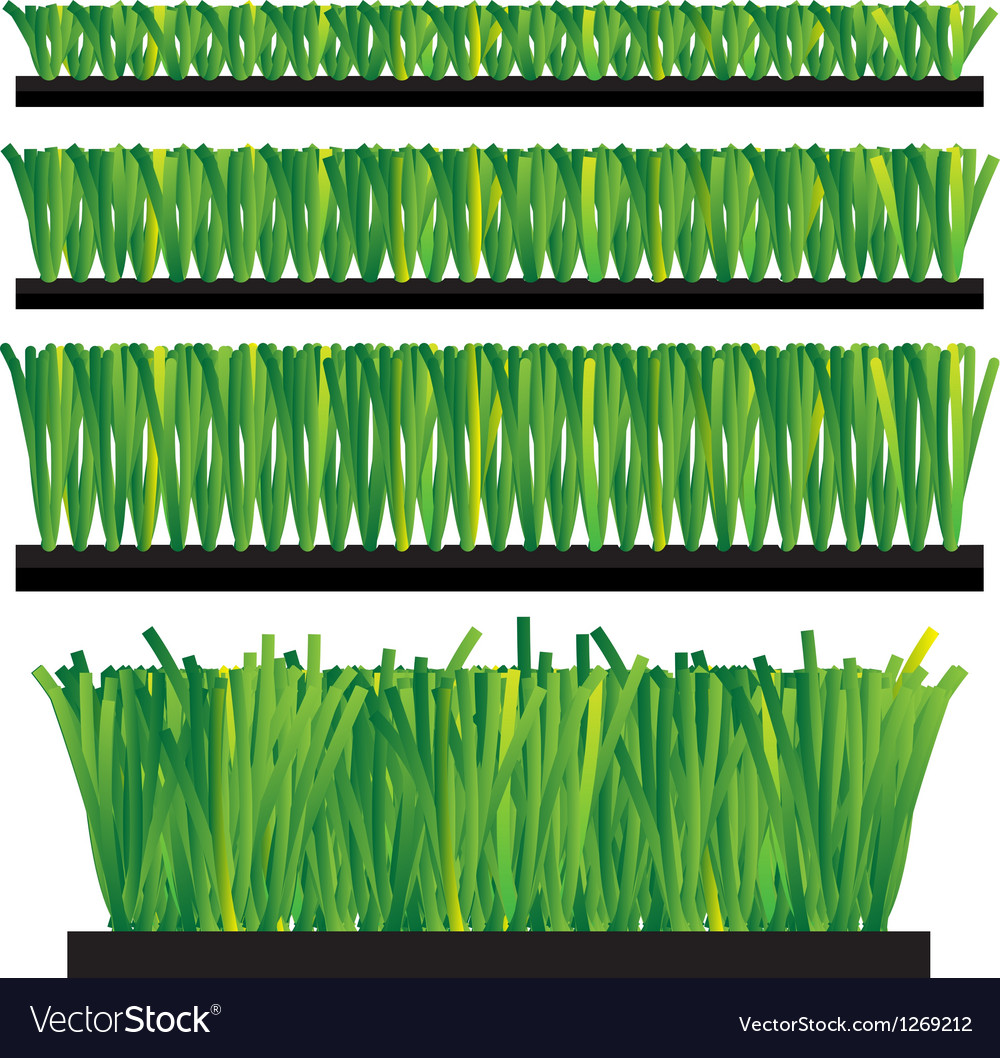 Artificial grass - synthetic grass - artifi vector | Price: 1 Credit (USD $1)