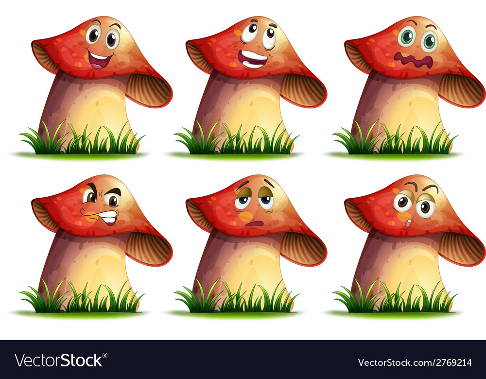 Mushroom expression vector | Price: 1 Credit (USD $1)