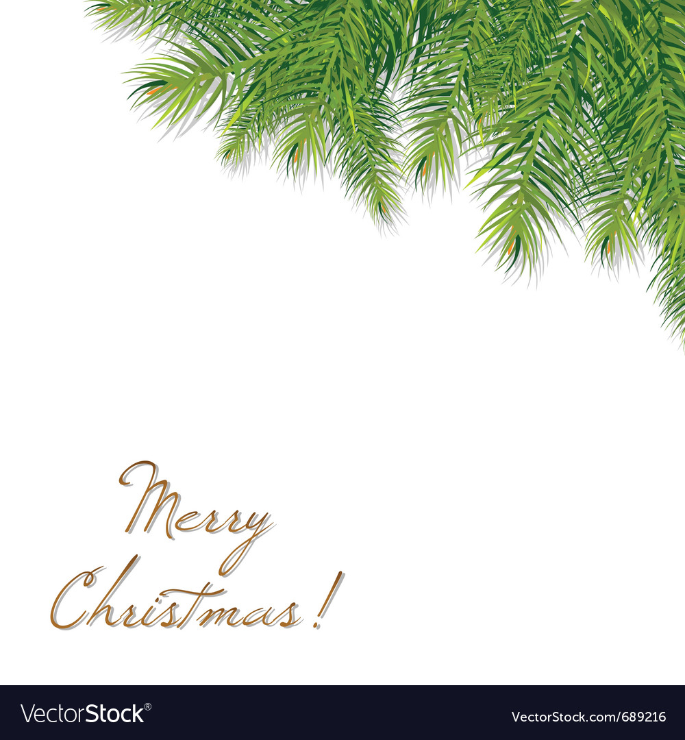 Christmas tree branch vector | Price: 1 Credit (USD $1)