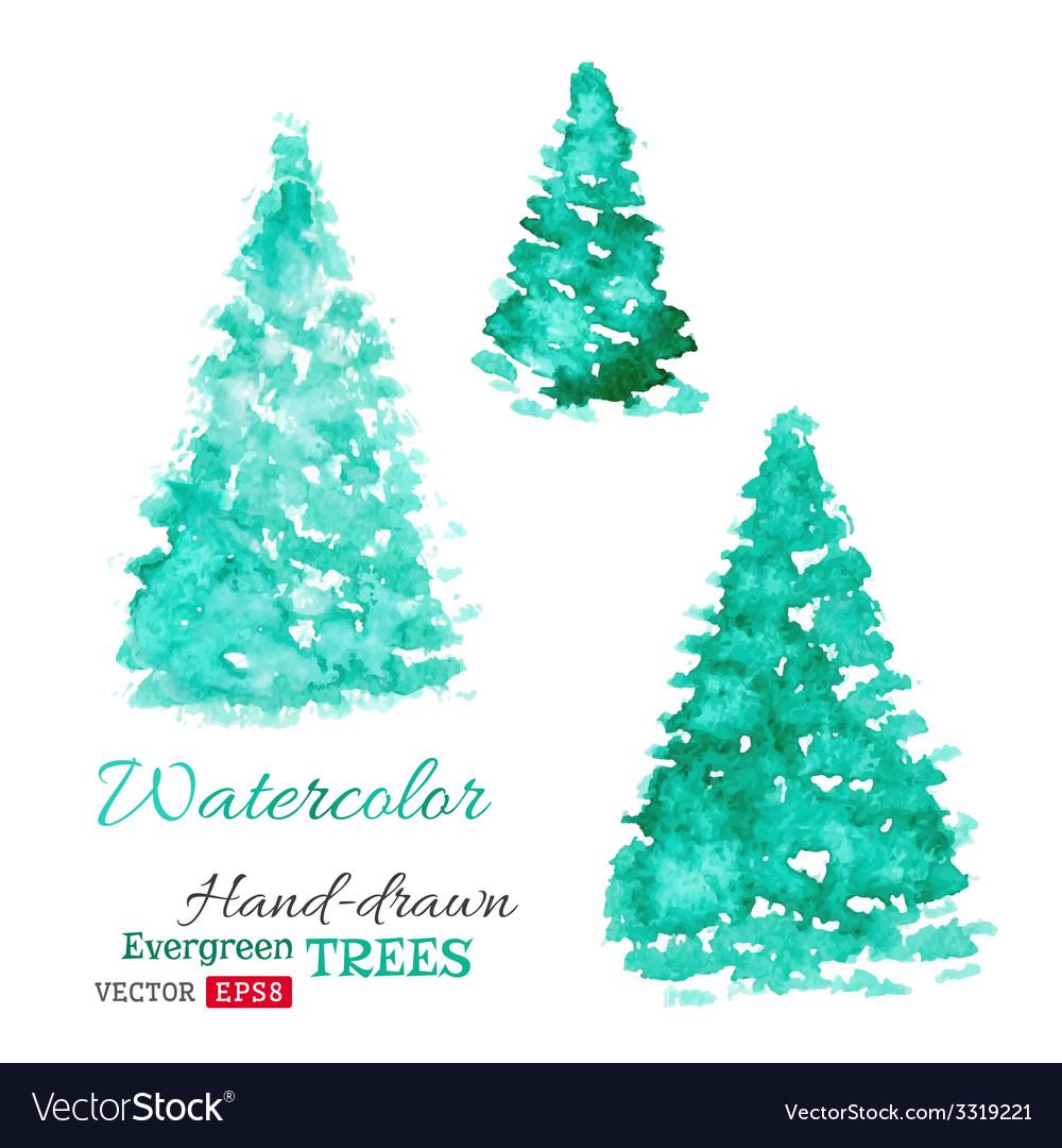Watercolor evergreen trees vector | Price: 1 Credit (USD $1)