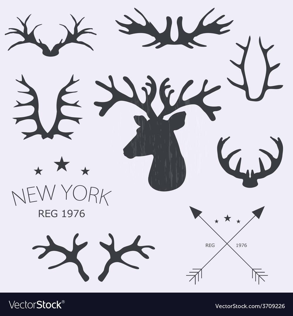 Deer horns set vector | Price: 1 Credit (USD $1)