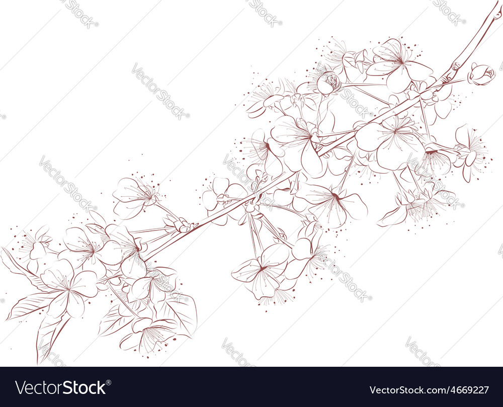 Cherry branch outline vector | Price: 1 Credit (USD $1)