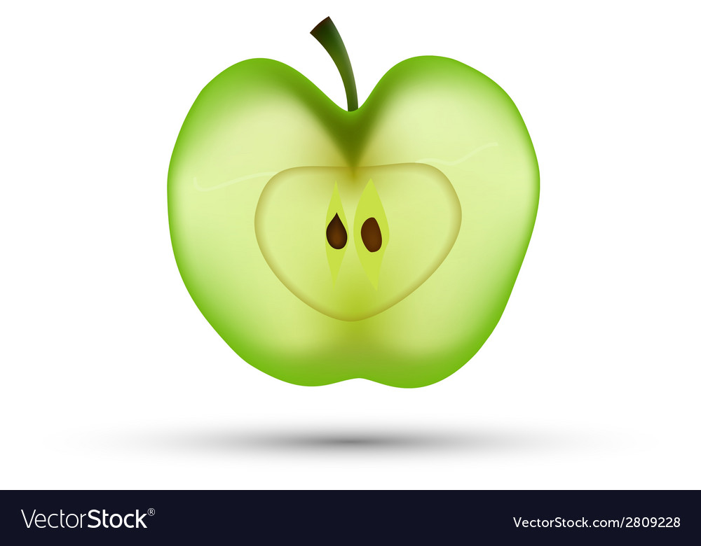 Slice of apple isolated vector | Price: 1 Credit (USD $1)