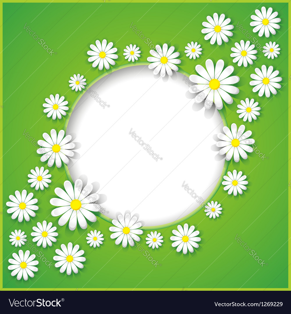 Abstract background with flower camomile vector | Price: 1 Credit (USD $1)