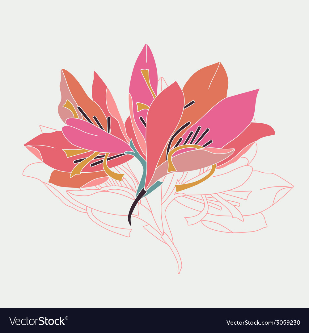 Lily flowers vector | Price: 1 Credit (USD $1)