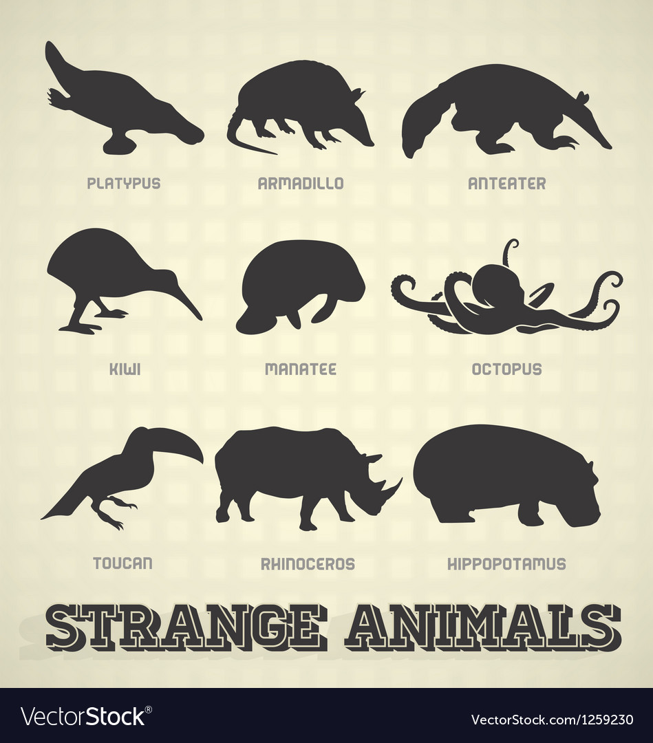 Strange and odd animal silhouettes vector | Price: 1 Credit (USD $1)