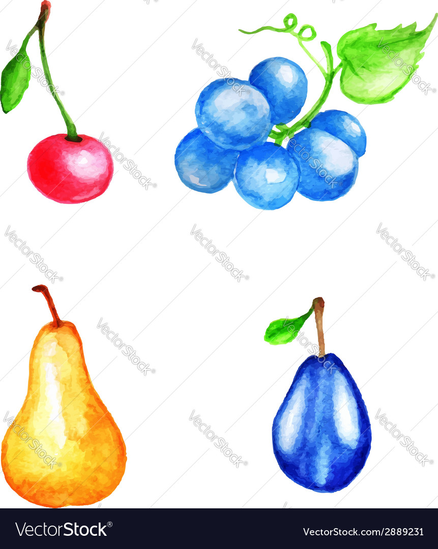 Set of watercolor fruits vector | Price: 1 Credit (USD $1)