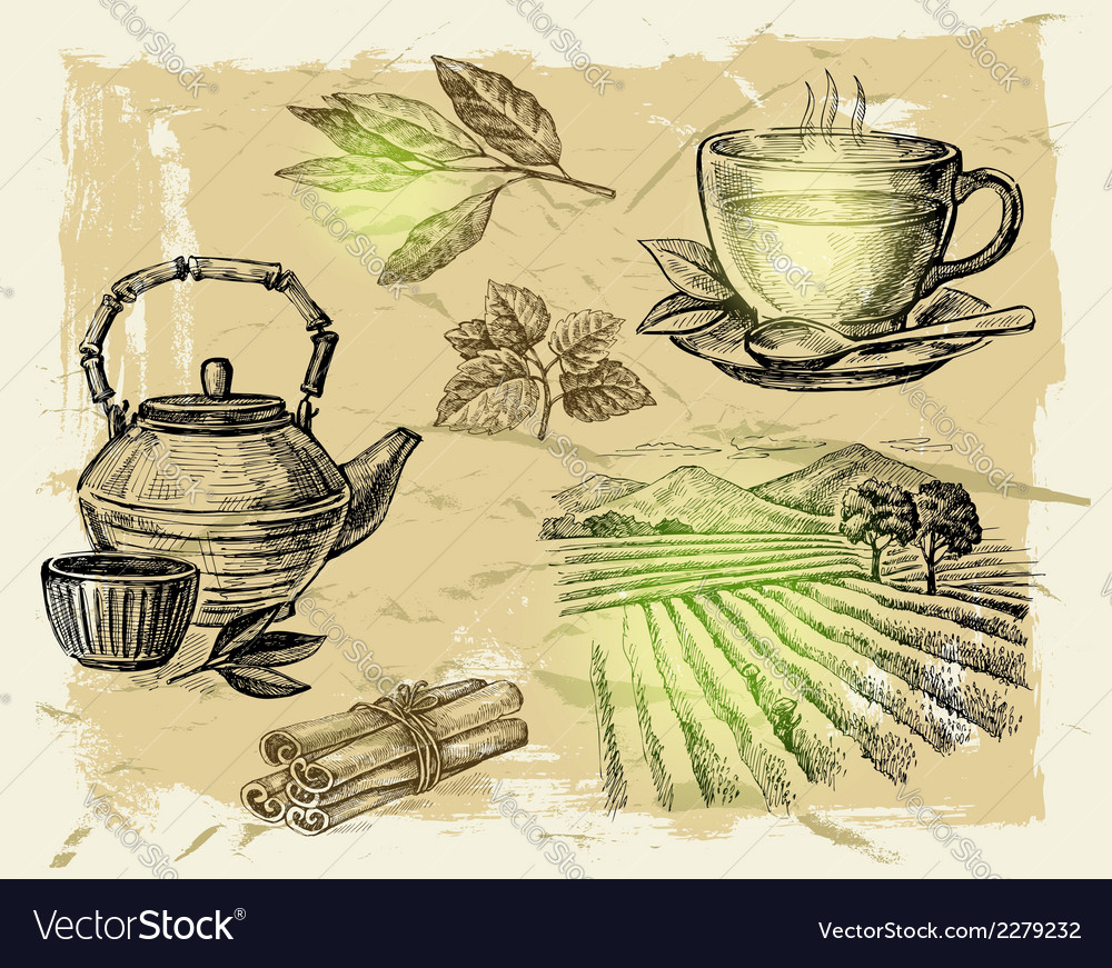Hand drawn tea vector | Price: 1 Credit (USD $1)