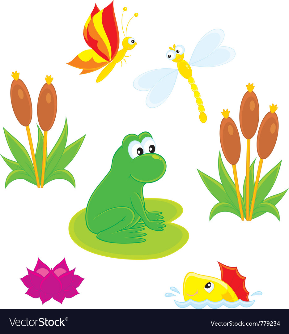 Pond vector | Price: 3 Credit (USD $3)
