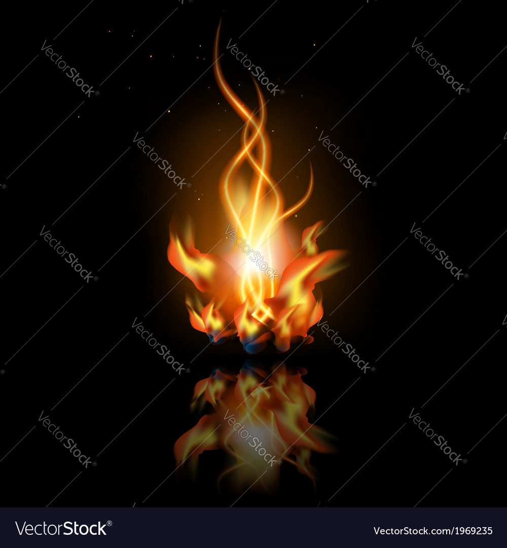 Fire with reflection vector | Price: 1 Credit (USD $1)