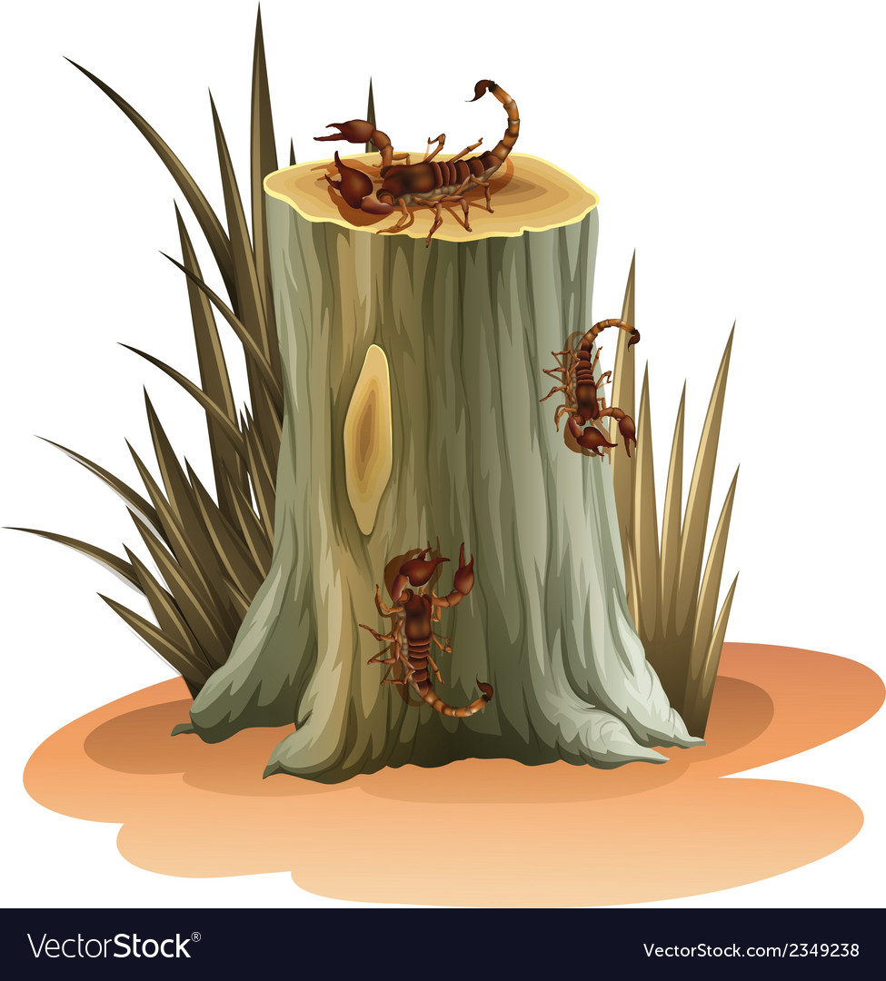 A stump with scorpions vector | Price: 1 Credit (USD $1)