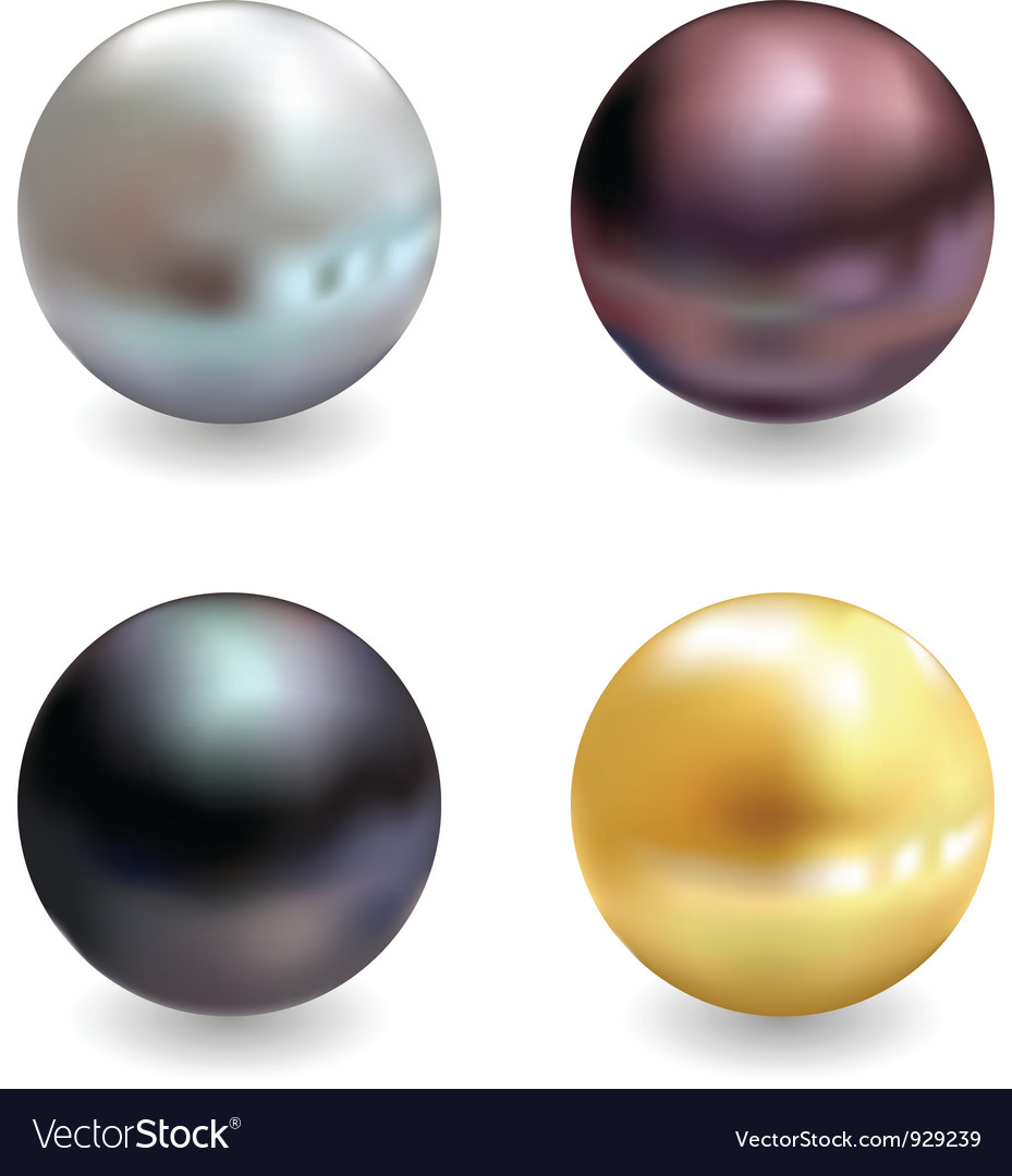 Beautiful pearls realistic vector | Price: 1 Credit (USD $1)