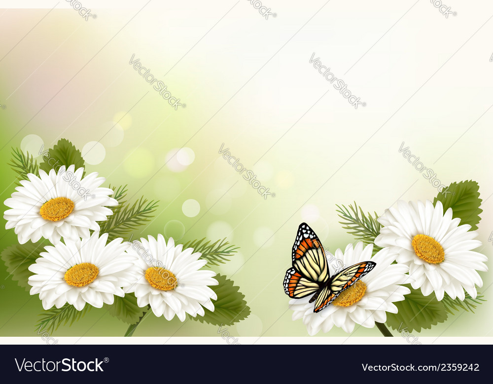 Summer background with yellow beautiful flowers vector | Price: 1 Credit (USD $1)