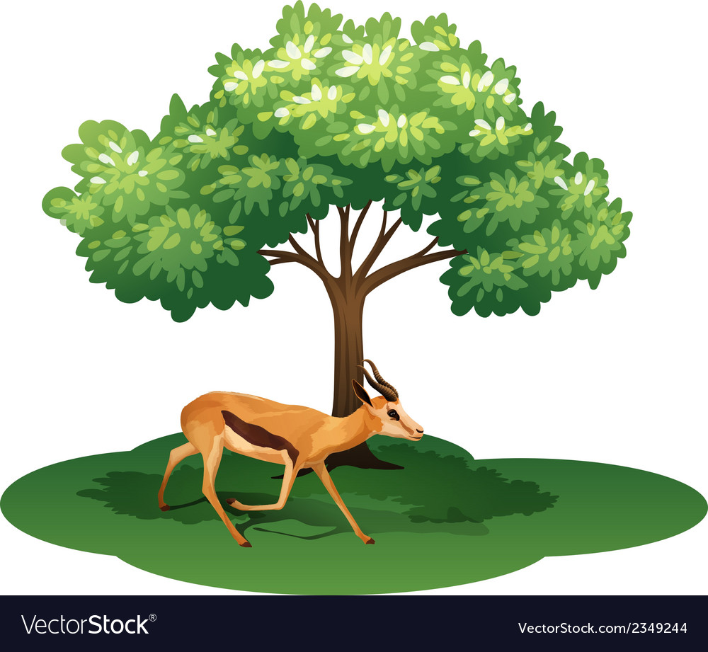 A deer under the tree vector | Price: 1 Credit (USD $1)