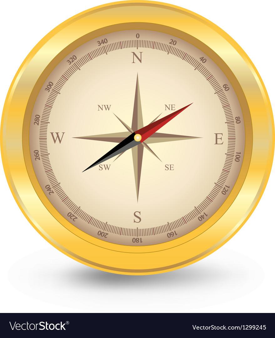Golden compas vector