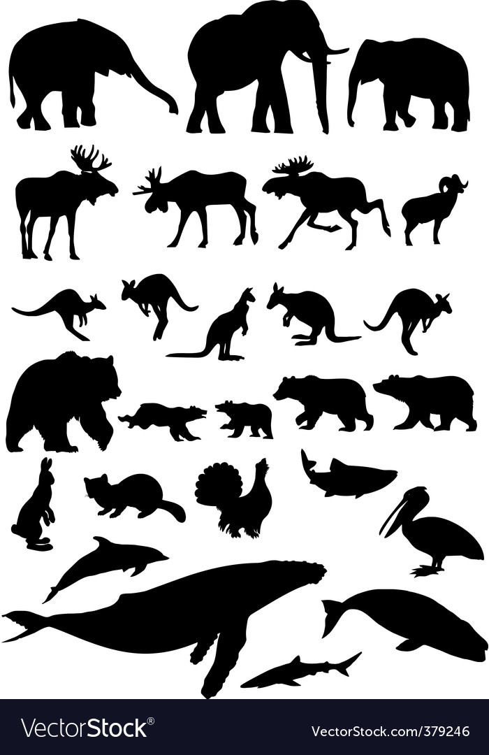 Animal collection vector | Price: 1 Credit (USD $1)