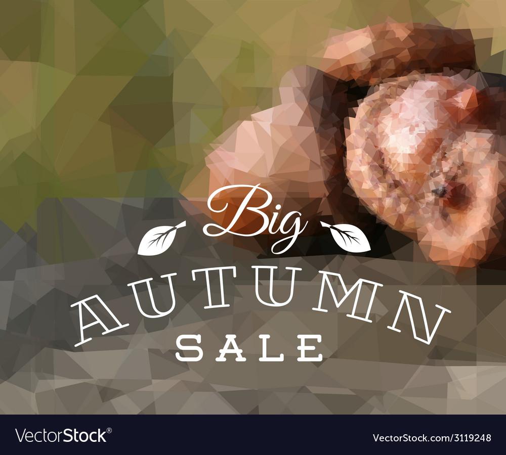 Autumn sale retro poster vector | Price: 1 Credit (USD $1)