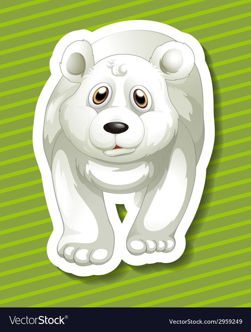 Polar bear vector | Price: 1 Credit (USD $1)