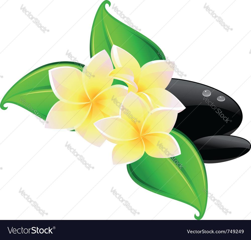 Spa flower symbol vector   Price: 1 Credit (USD $1)