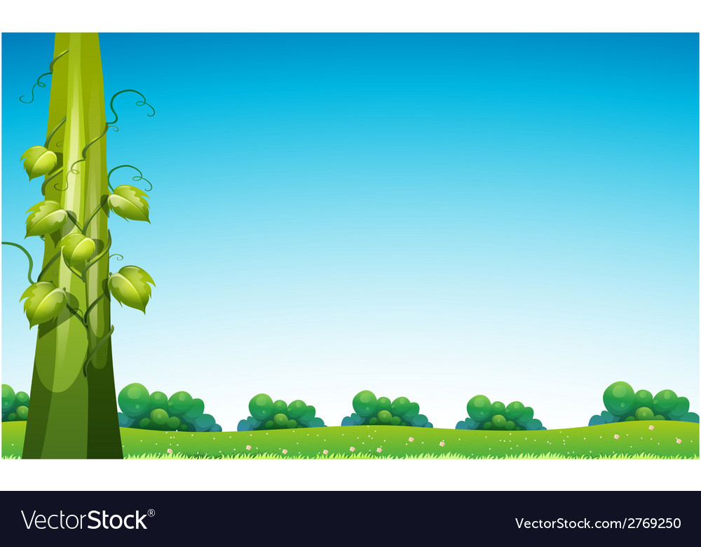 Beanstalk in field vector | Price: 1 Credit (USD $1)