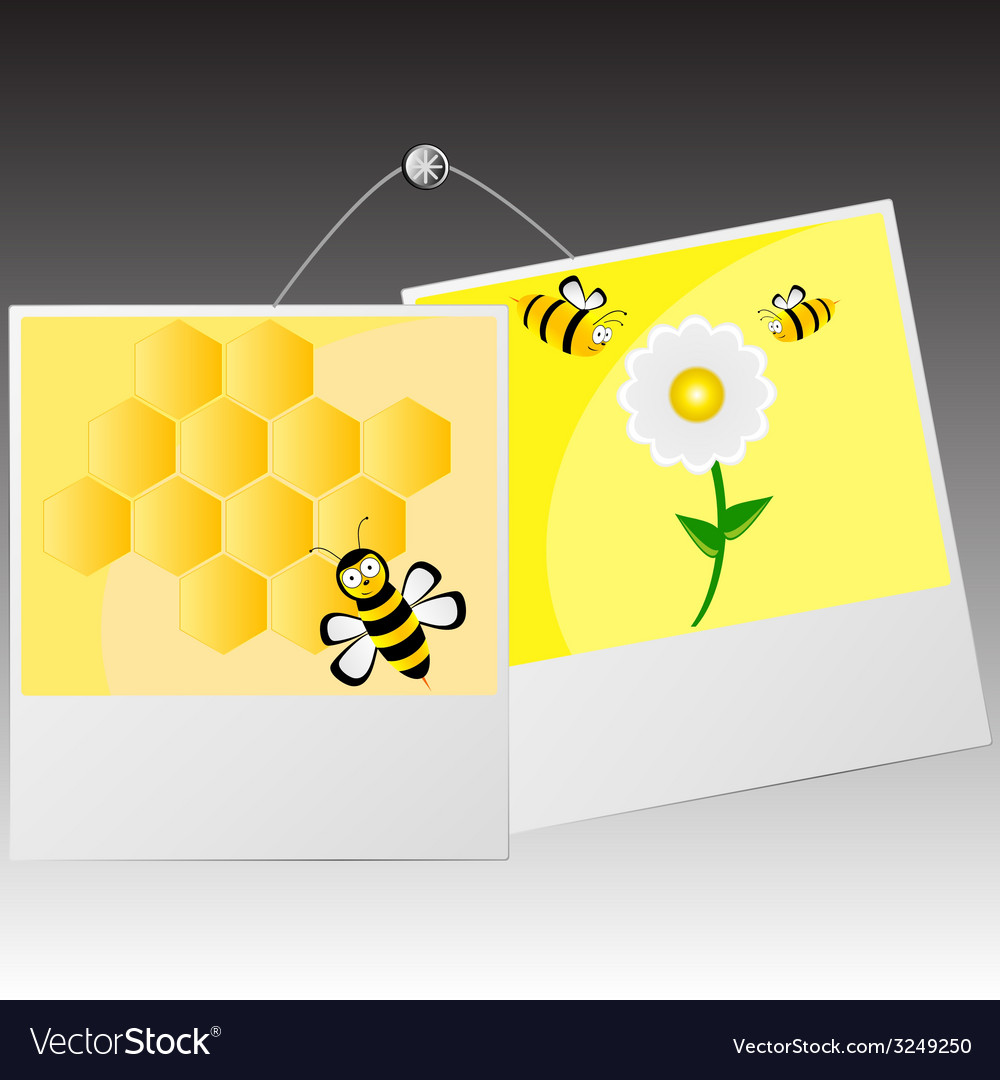 Photo frame with cute bee vector | Price: 1 Credit (USD $1)