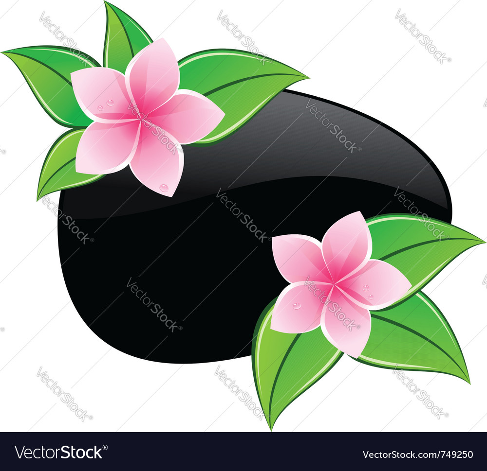 Spa pink flowers icons vector | Price: 1 Credit (USD $1)
