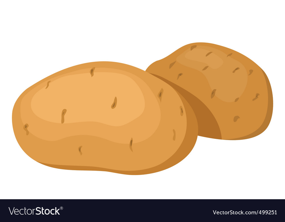 Potatoes vector   Price: 1 Credit (USD $1)