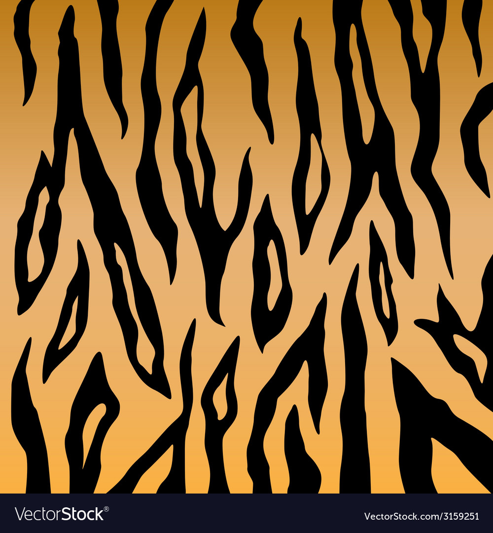 Tiger print pattern vector | Price: 1 Credit (USD $1)
