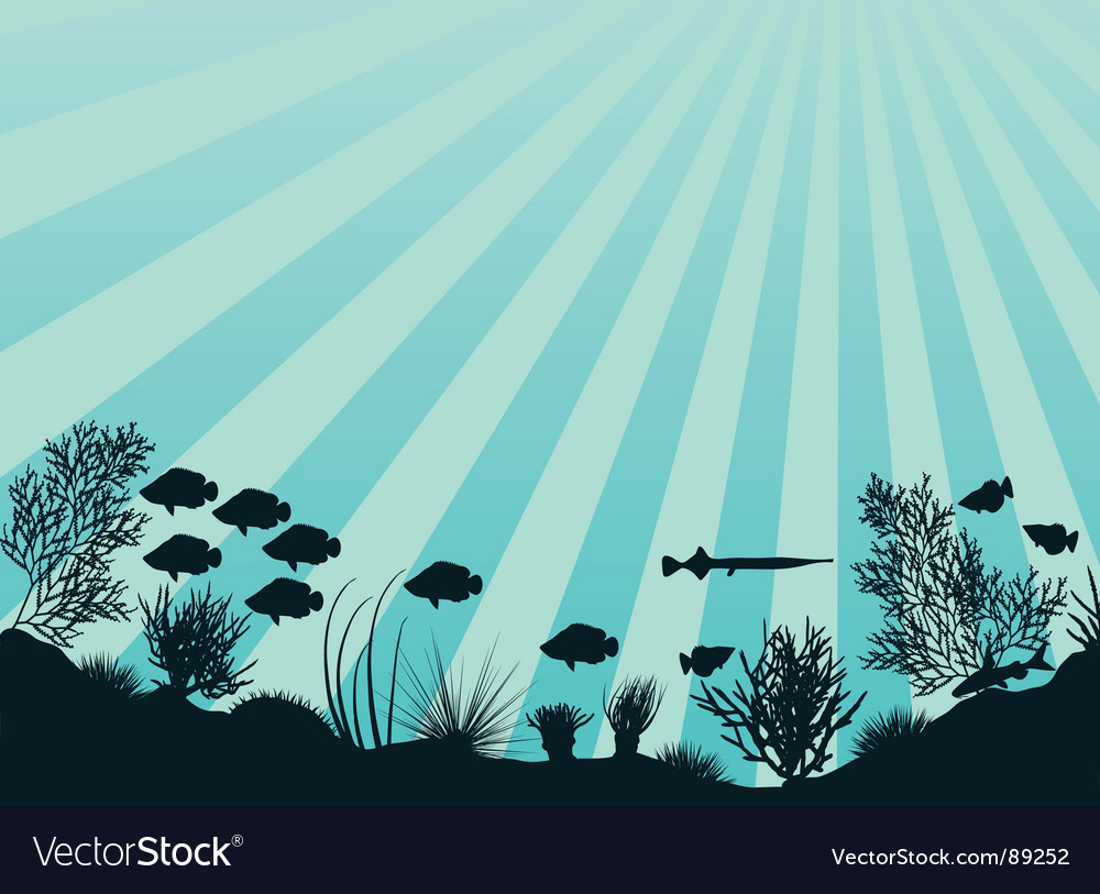 Coral reef vector | Price: 1 Credit (USD $1)