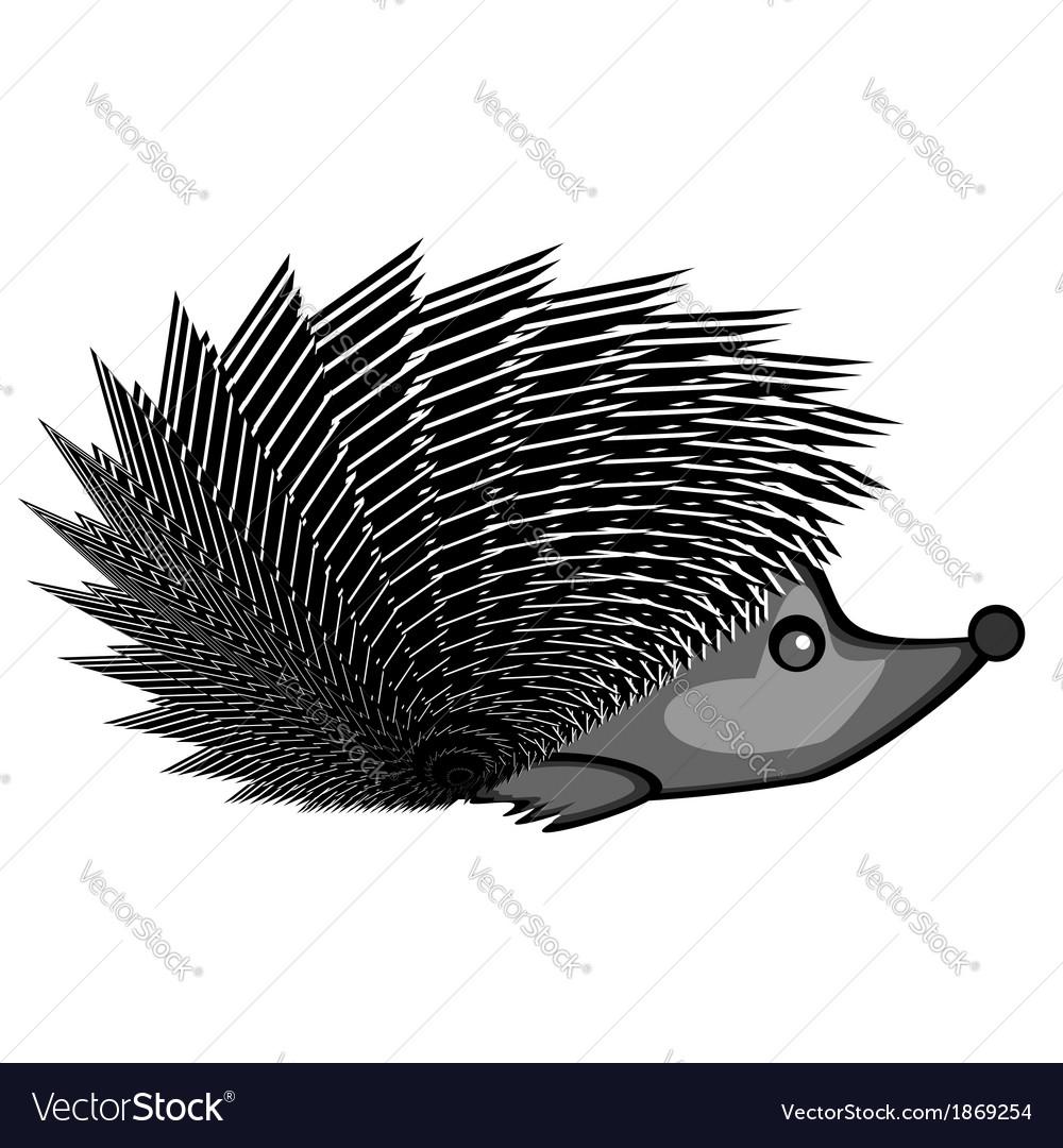 A funny hedgehog vector | Price: 1 Credit (USD $1)