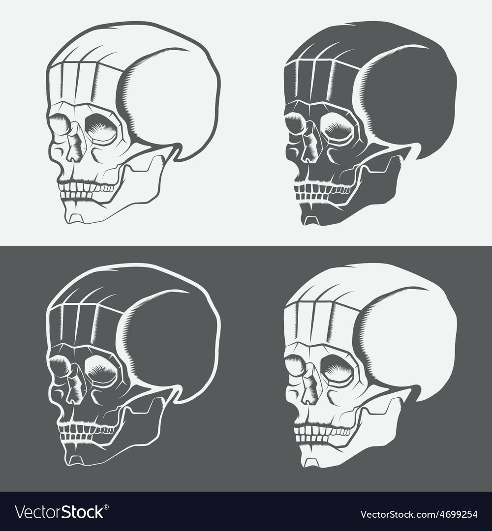 Set of skulls design template vector   Price: 1 Credit (USD $1)