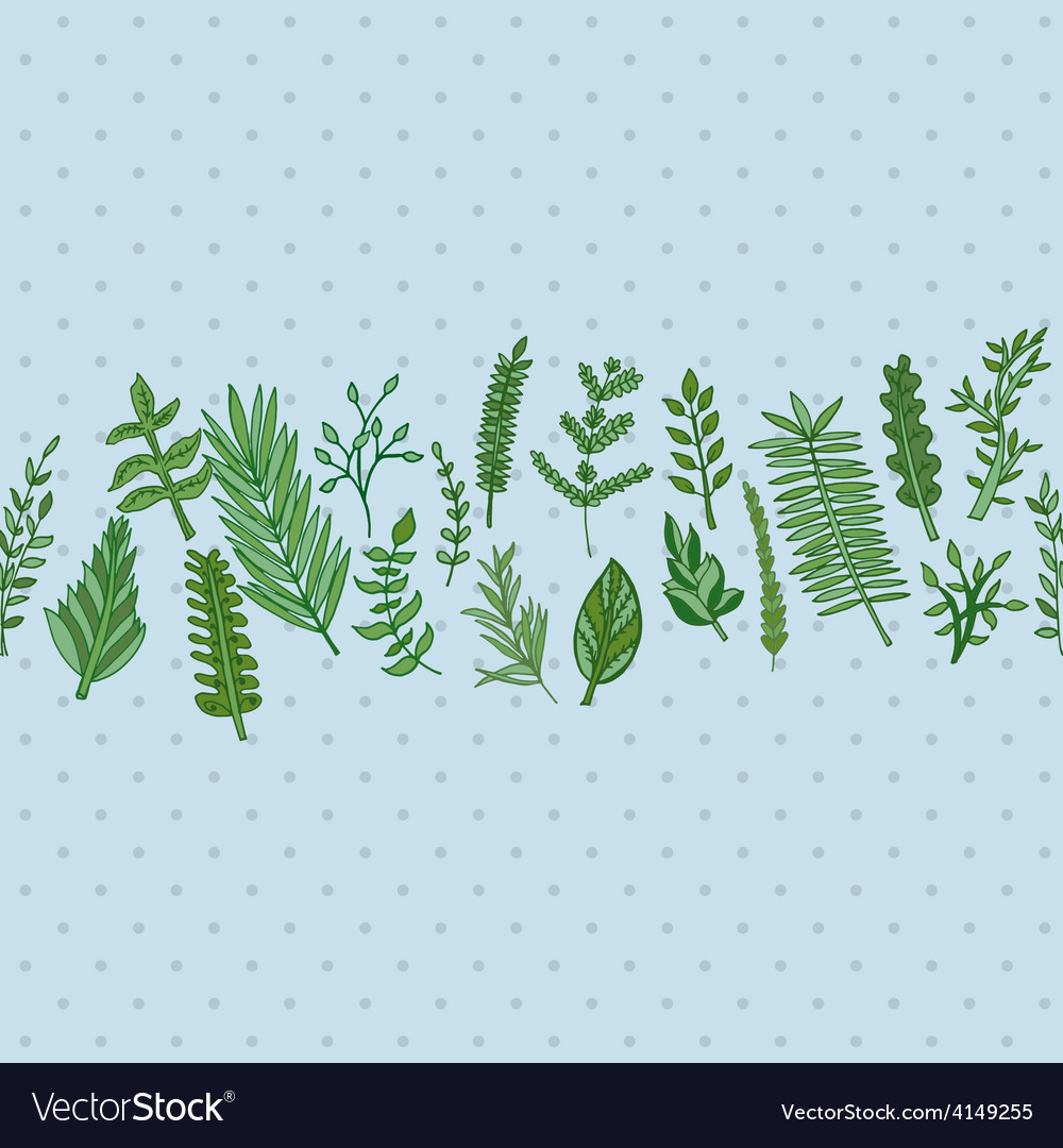 Herbal border pattern hand drawn vector | Price: 1 Credit (USD $1)