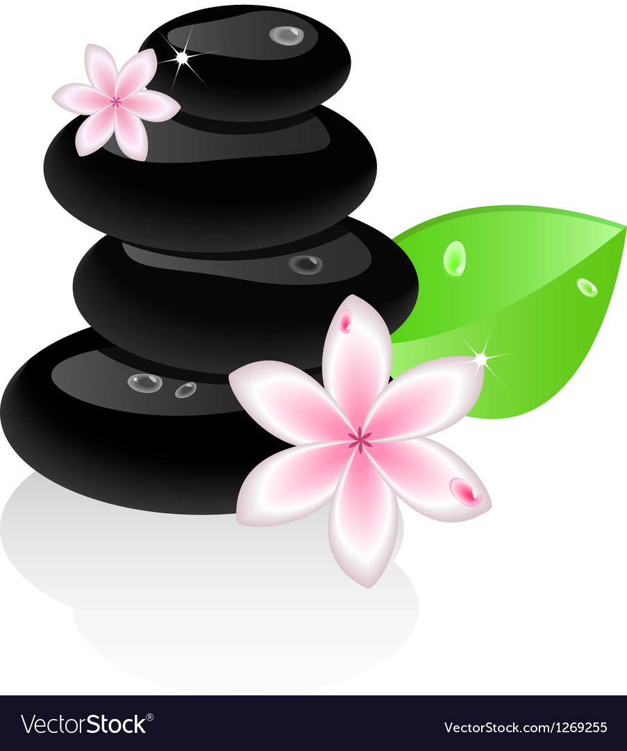 Zen stones with flower and leaf vector | Price: 1 Credit (USD $1)