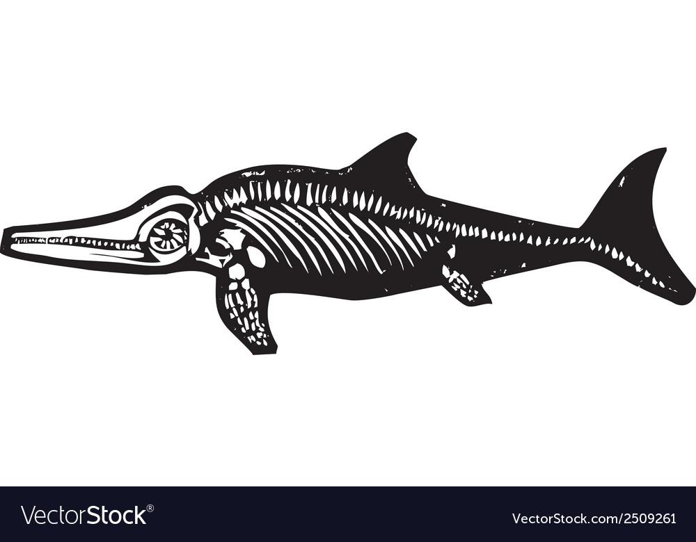 Ichthyosaur dinosaur fossil vector | Price: 1 Credit (USD $1)