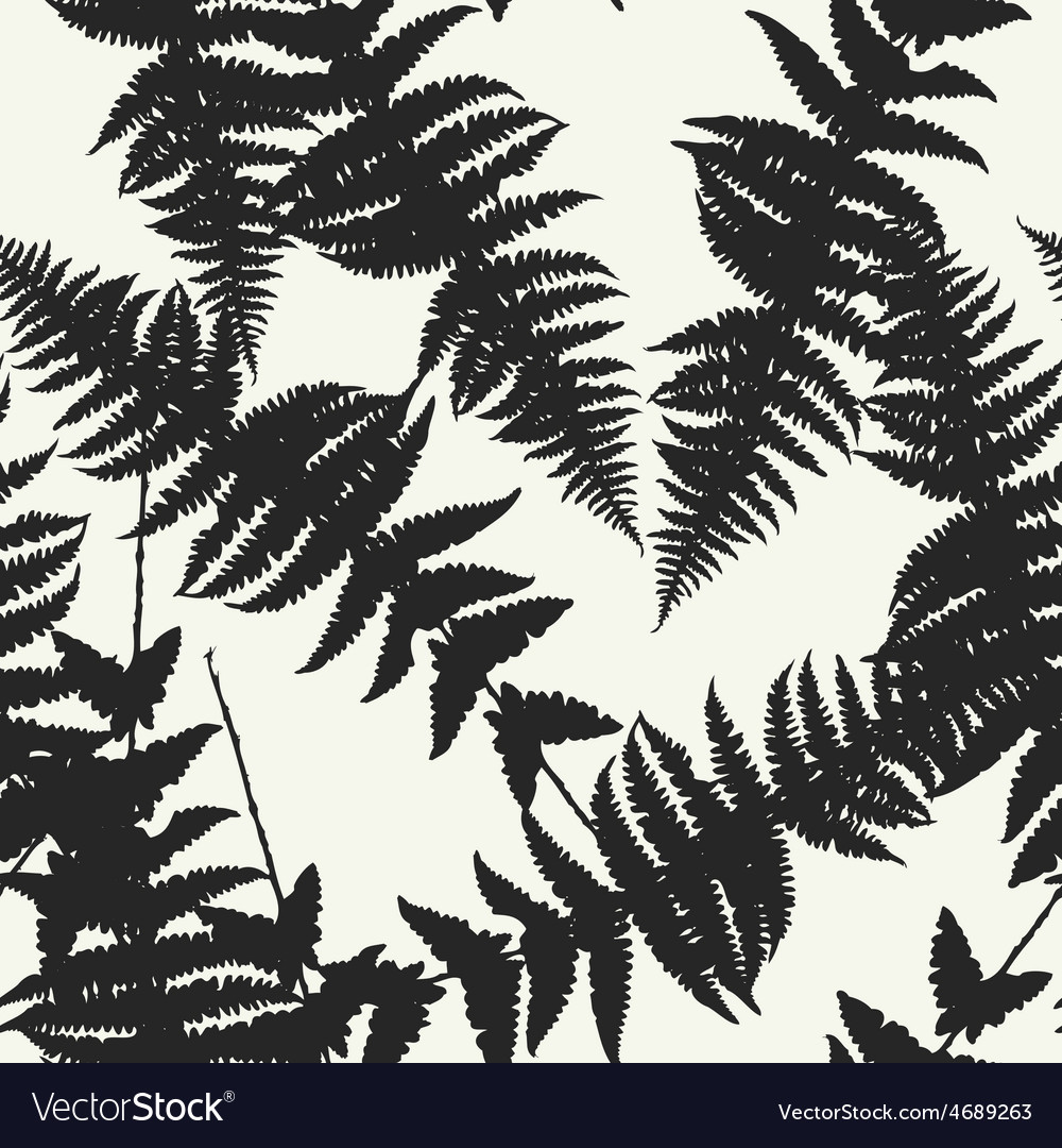 Seamless pattern of fern leaves vector | Price: 1 Credit (USD $1)