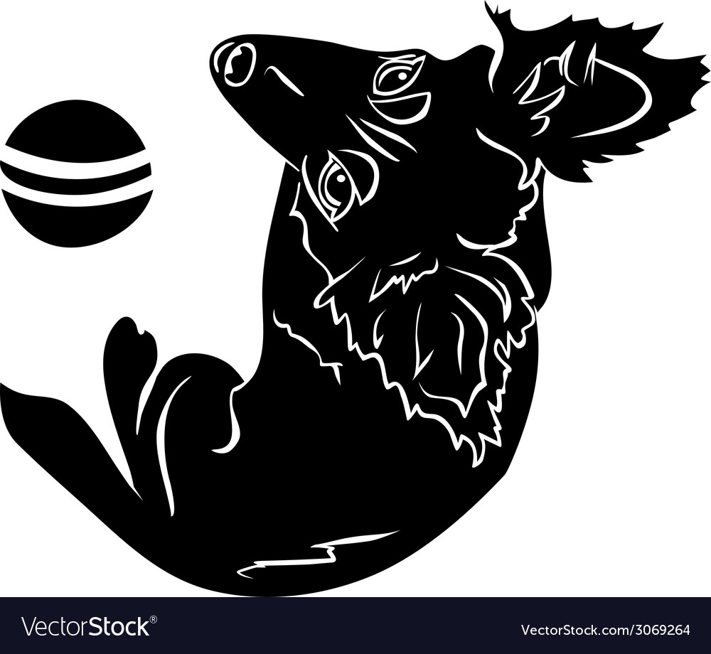 Cute dog with a ball black stencil first variant vector | Price: 1 Credit (USD $1)