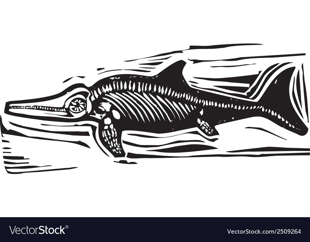 Ichthyosaur dinosaur fossil b vector | Price: 1 Credit (USD $1)