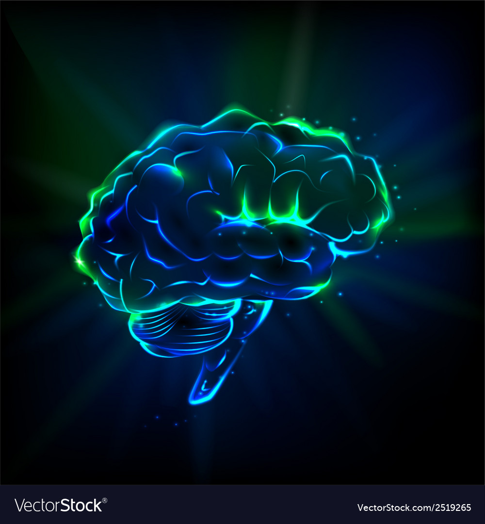 Shining brain vector | Price: 1 Credit (USD $1)