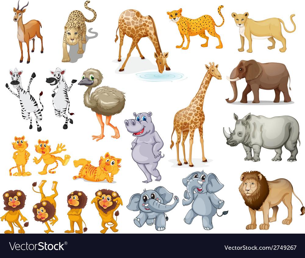 Wildlife set vector | Price: 1 Credit (USD $1)