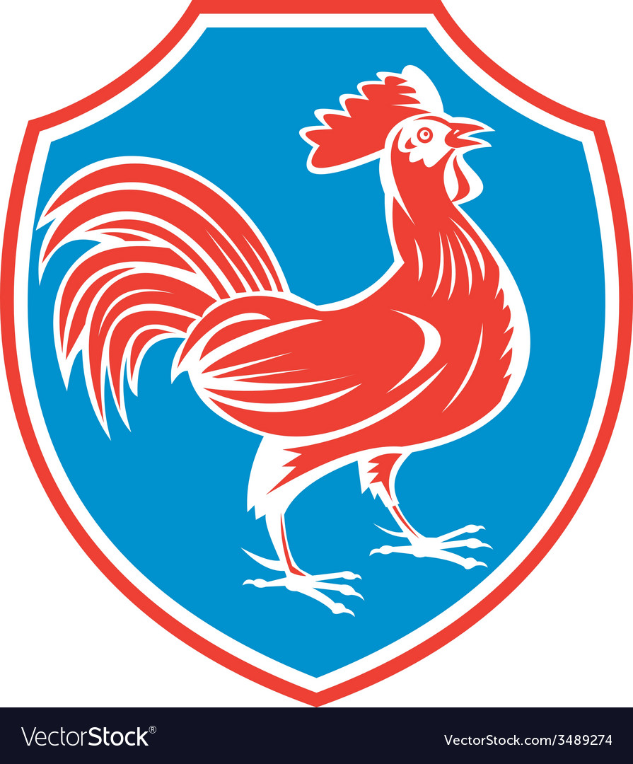 Chicken rooster side shield woodcut vector   Price: 3 Credit (USD $3)