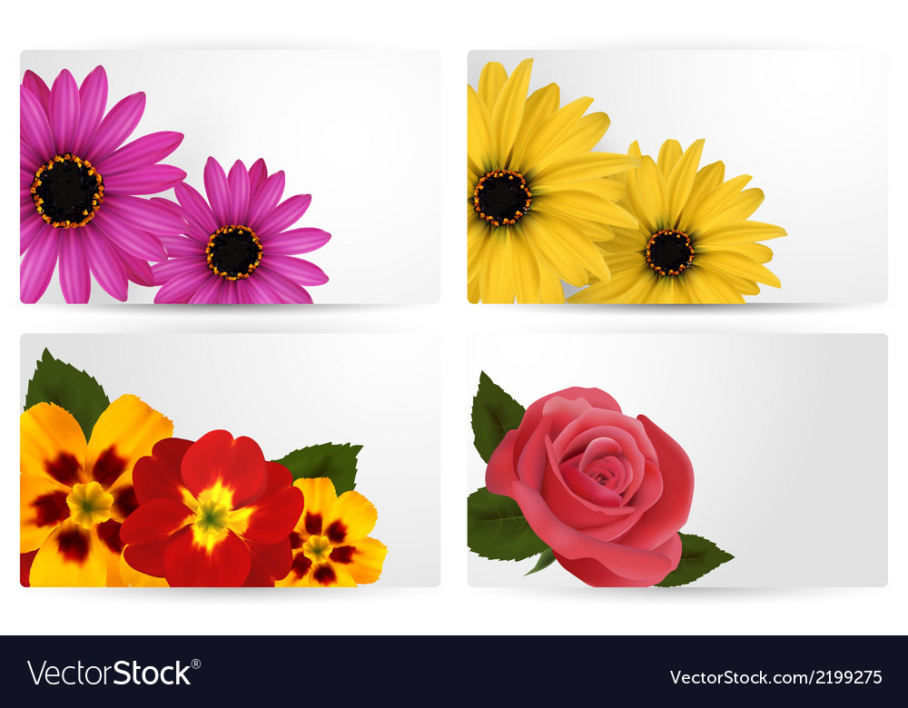 Set of gift cards with different colorful flower vector | Price: 1 Credit (USD $1)