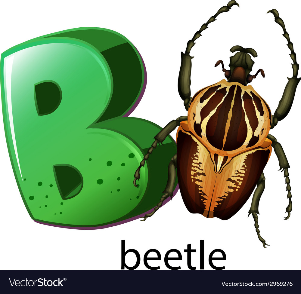 A letter b for beetle vector | Price: 1 Credit (USD $1)