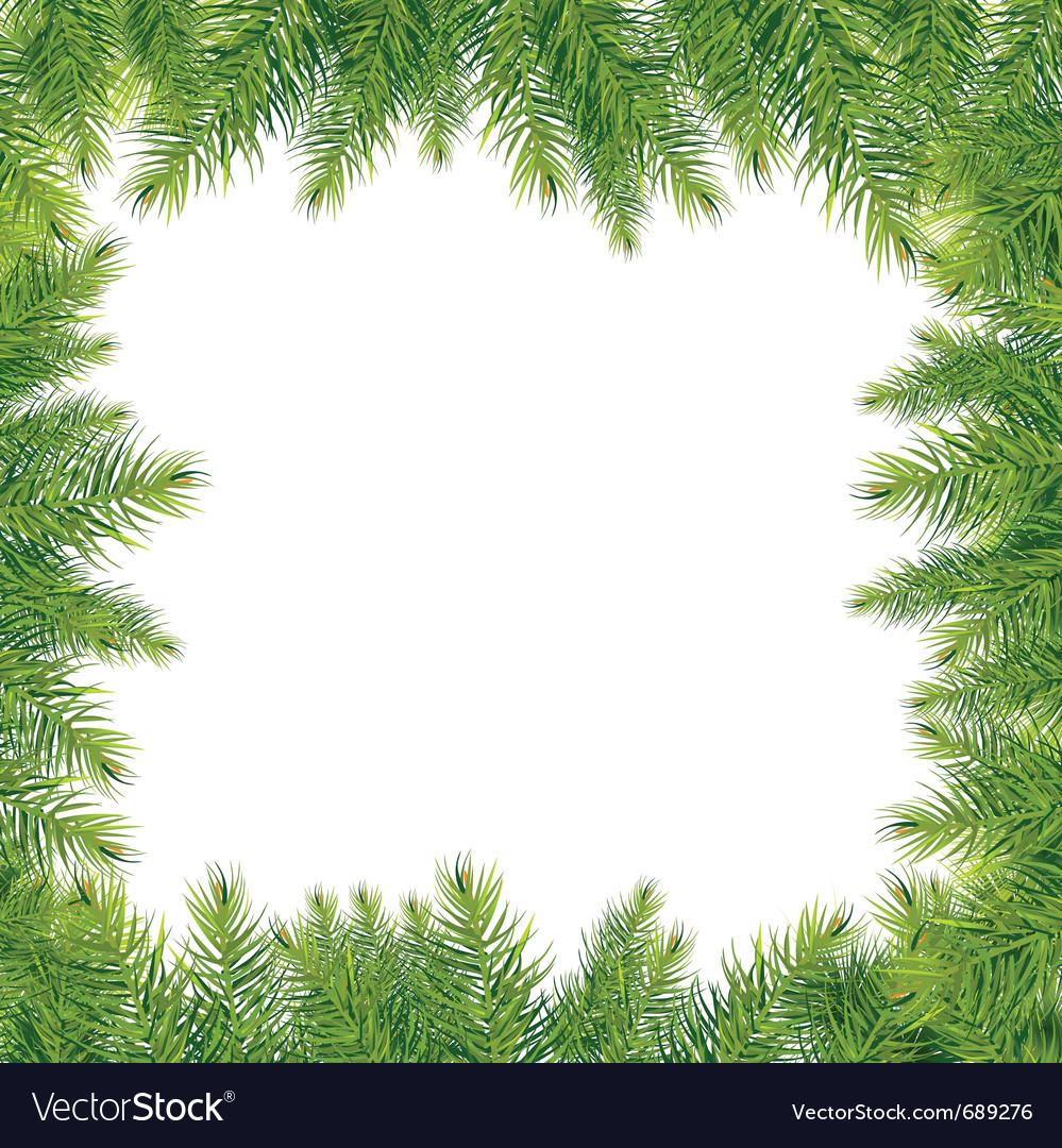 Christmas tree branches vector | Price: 1 Credit (USD $1)