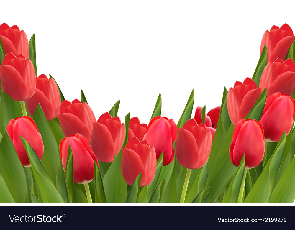 Holiday background with bouquet of red flowers vector | Price: 1 Credit (USD $1)