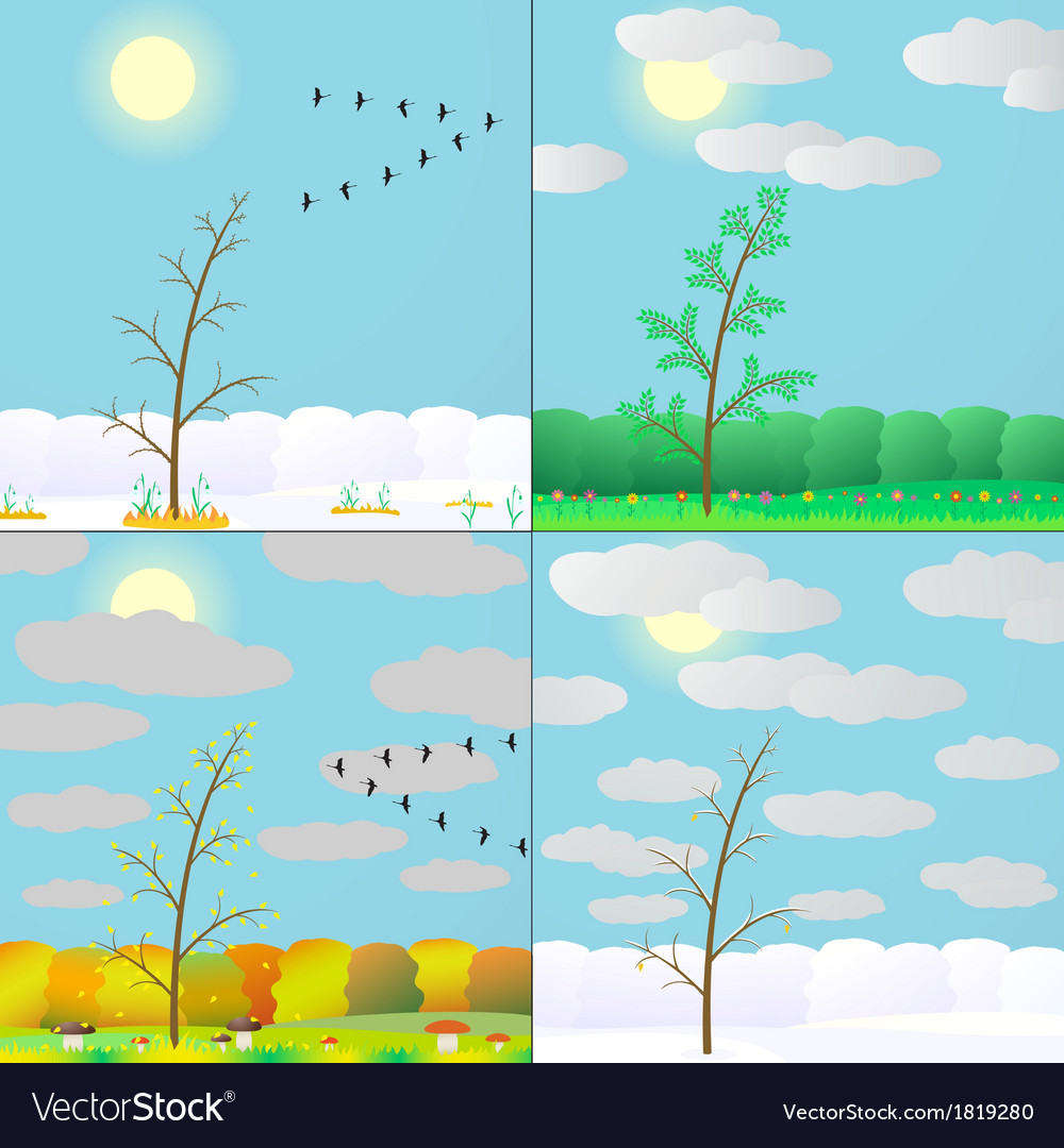 Silhouette seasons in forest vector | Price: 1 Credit (USD $1)