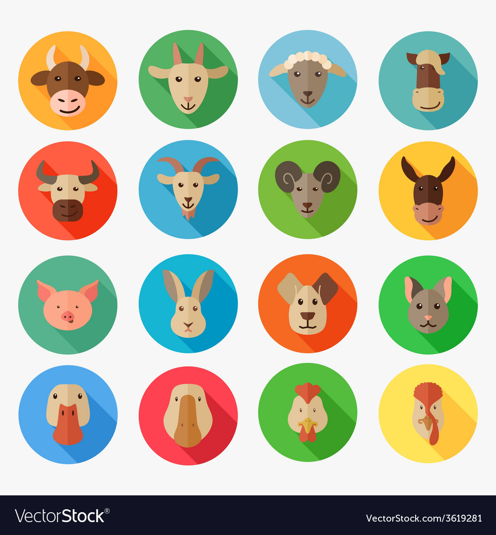 Farm animals flat icon with long shadow vector | Price: 1 Credit (USD $1)