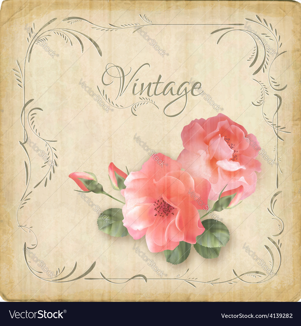 Vintage retro flowers roses postcard border frame vector | Price: 1 Credit (USD $1)