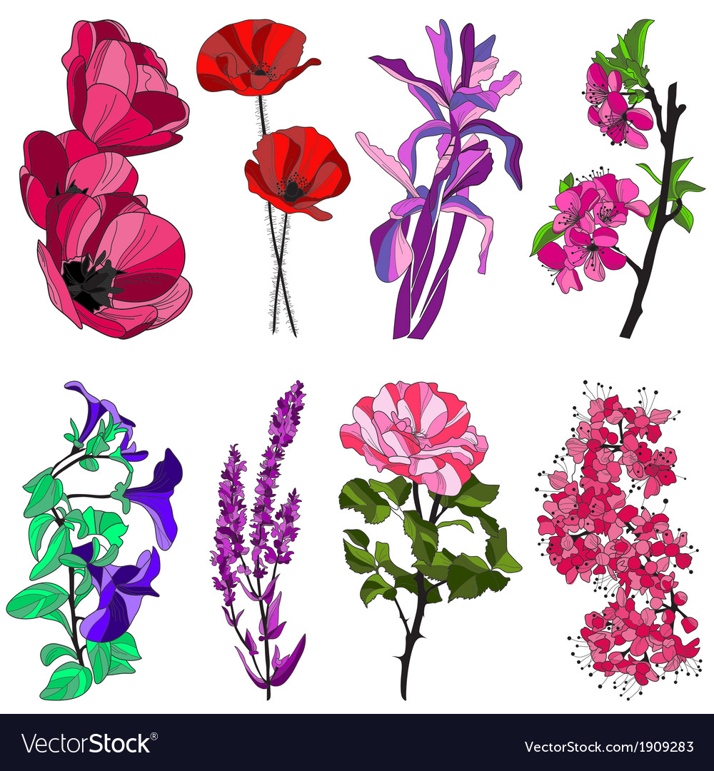 Decorative flowers set vector | Price: 1 Credit (USD $1)
